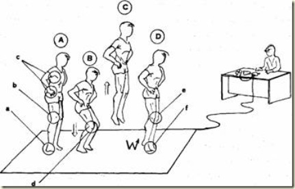 Sports and Fitness Science: Vertical Jump tests: how to